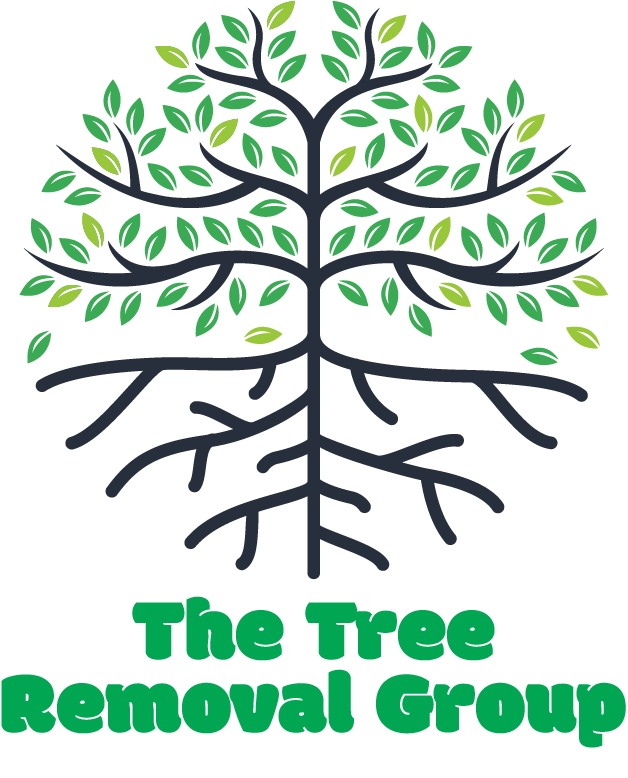 Affordable Tree Removal Services | Local Tree Trimming & Removal